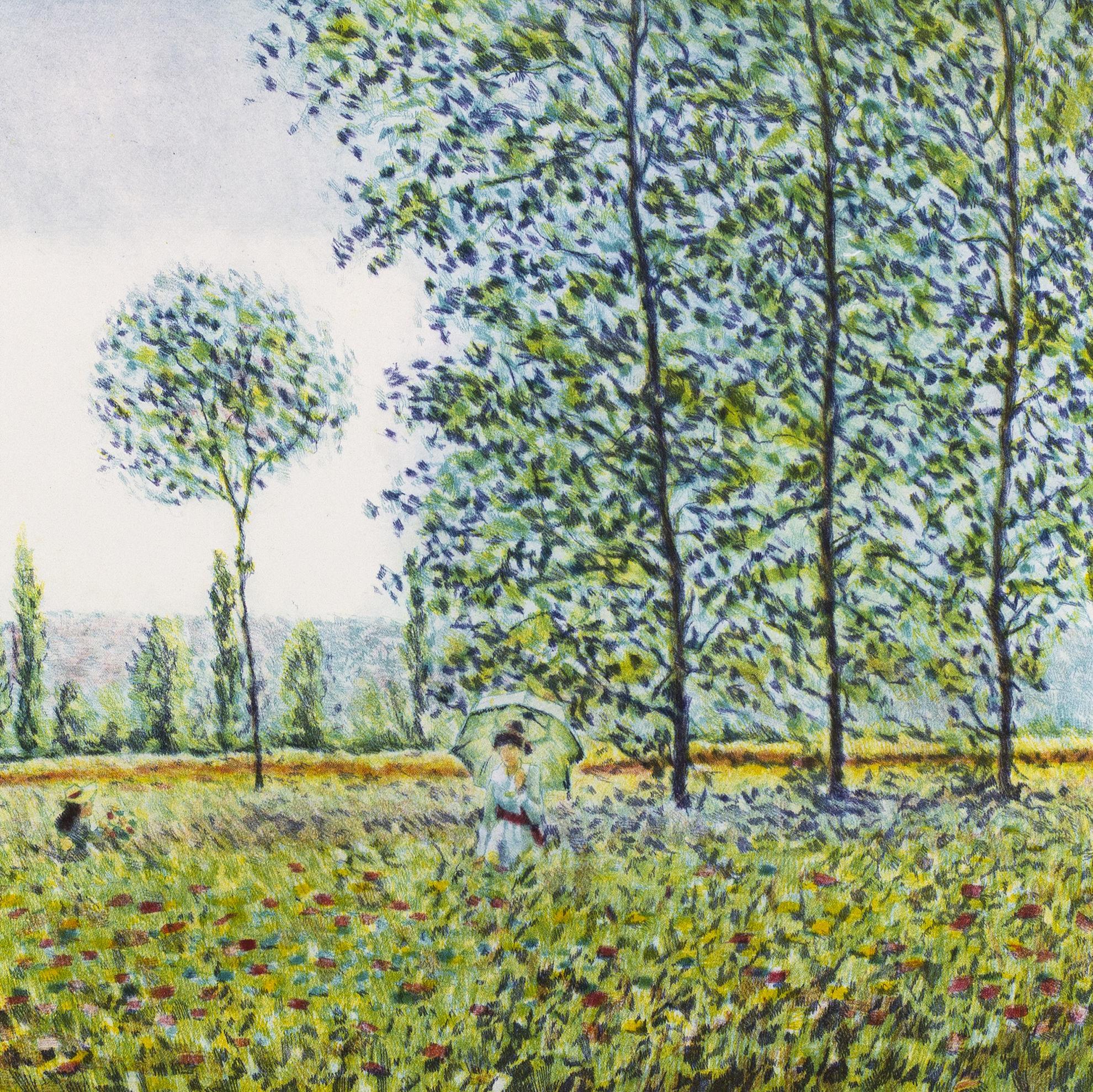 Immagine di Il prato di Monet