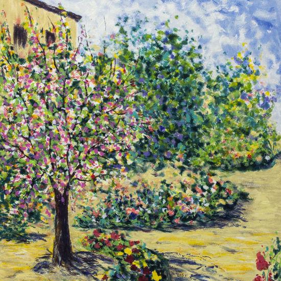 Immagine di Il giardino di Arul