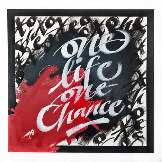 Immagine di One Life One Chance