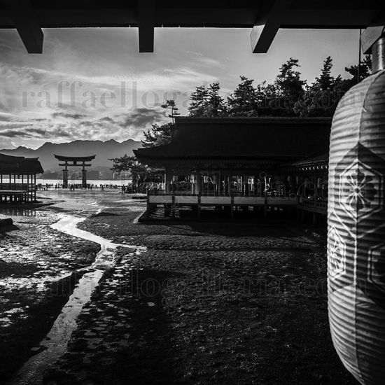 Immagine di From the World_14 Miyajima
