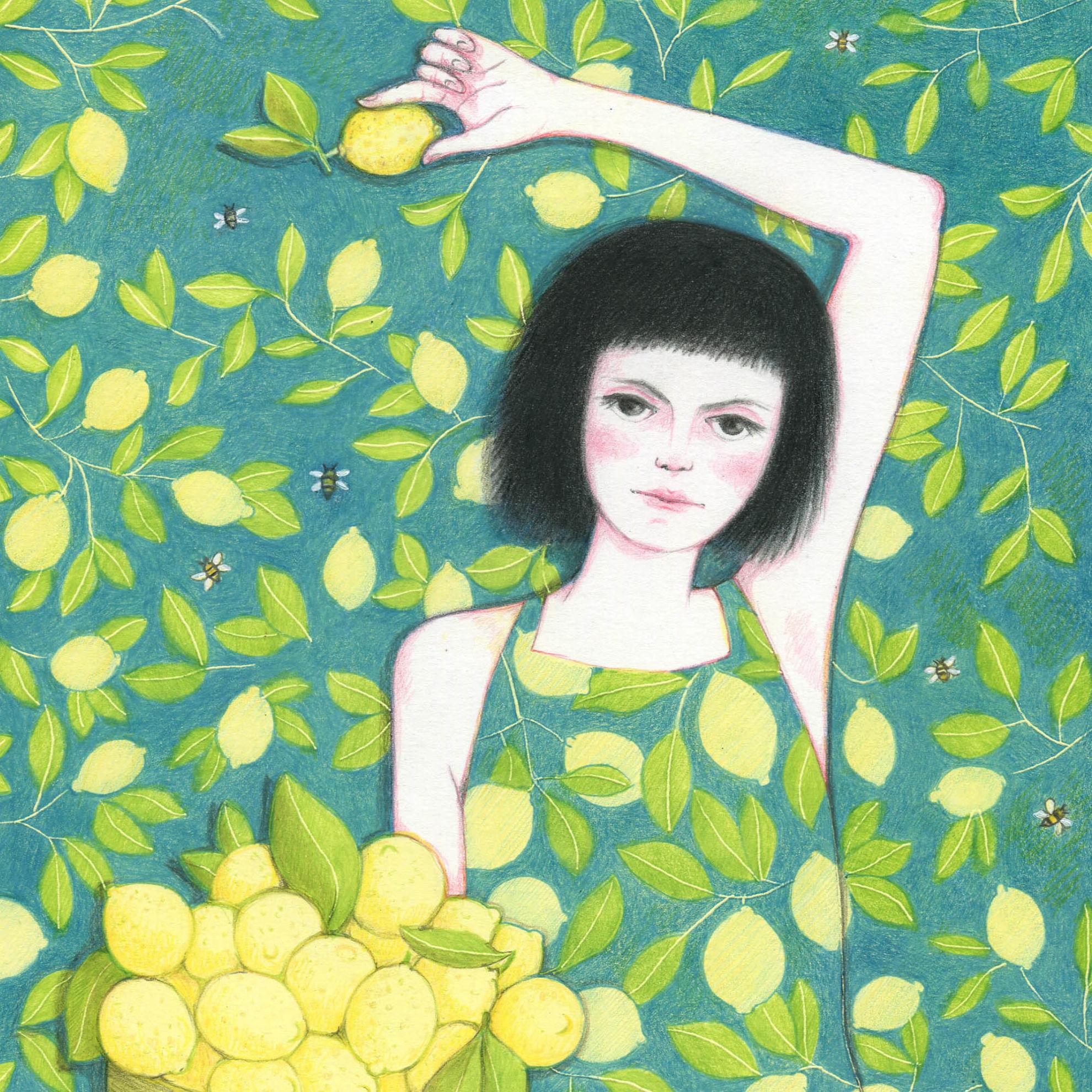 Immagine di Limoni