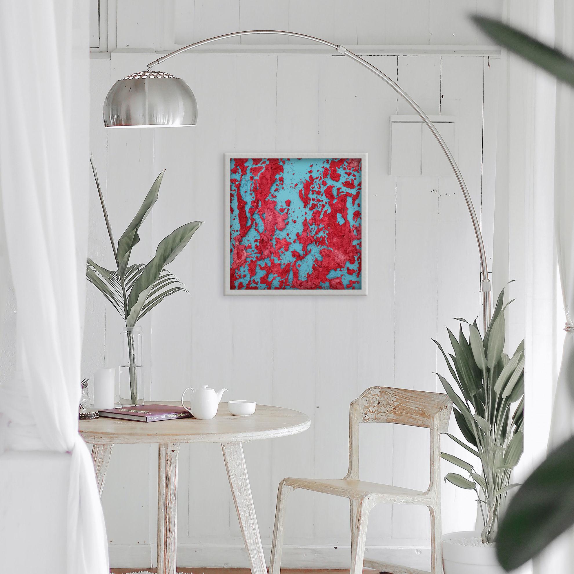 Immagine di Alghe rosse