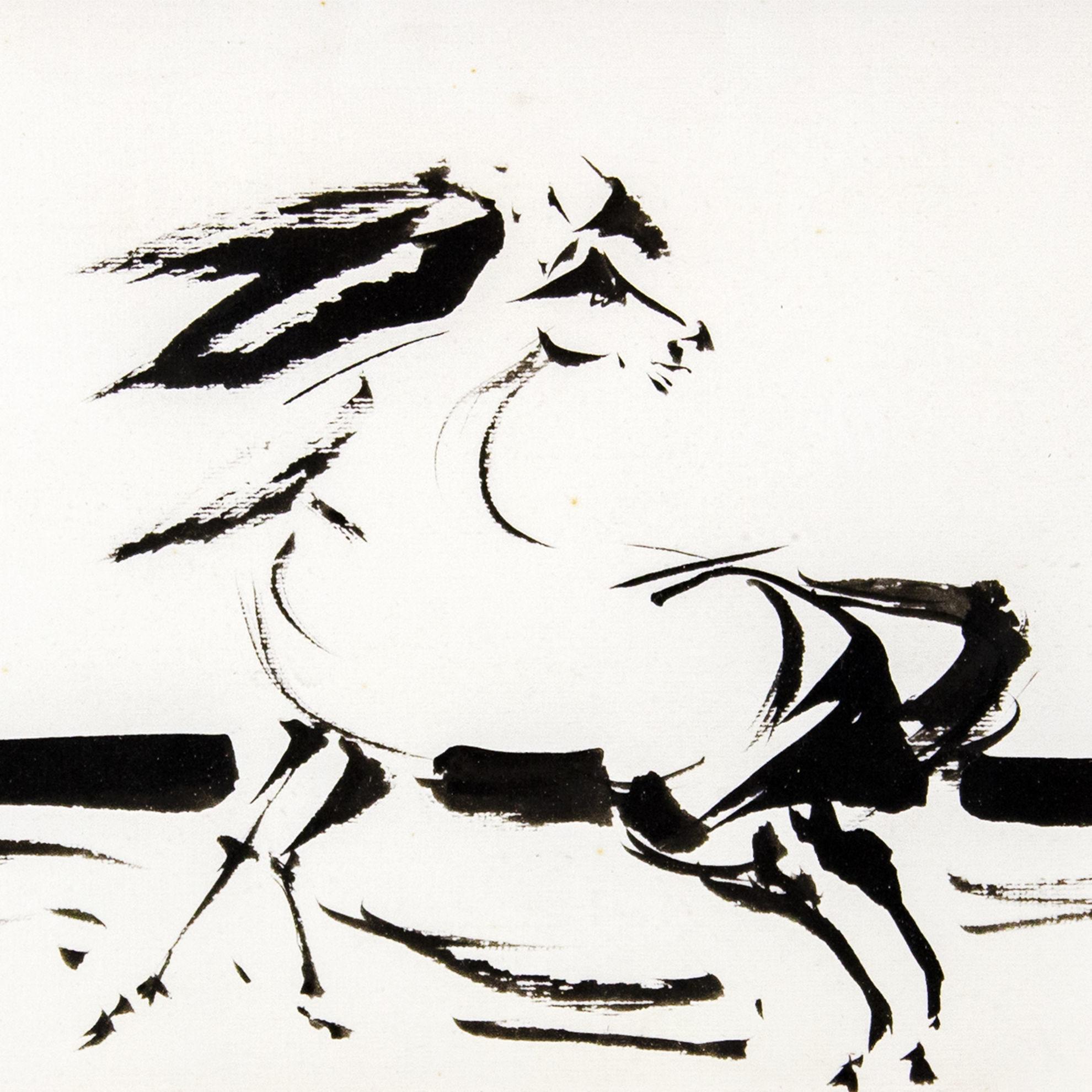 Immagine di Cavallo