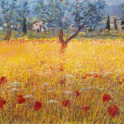 Immagine di Campo di grano in Abruzzo