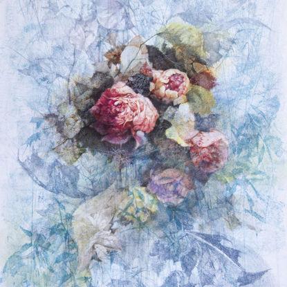 Immagine di Cespuglio di rose
