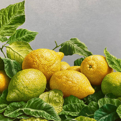 Immagine di Natura morta con limoni