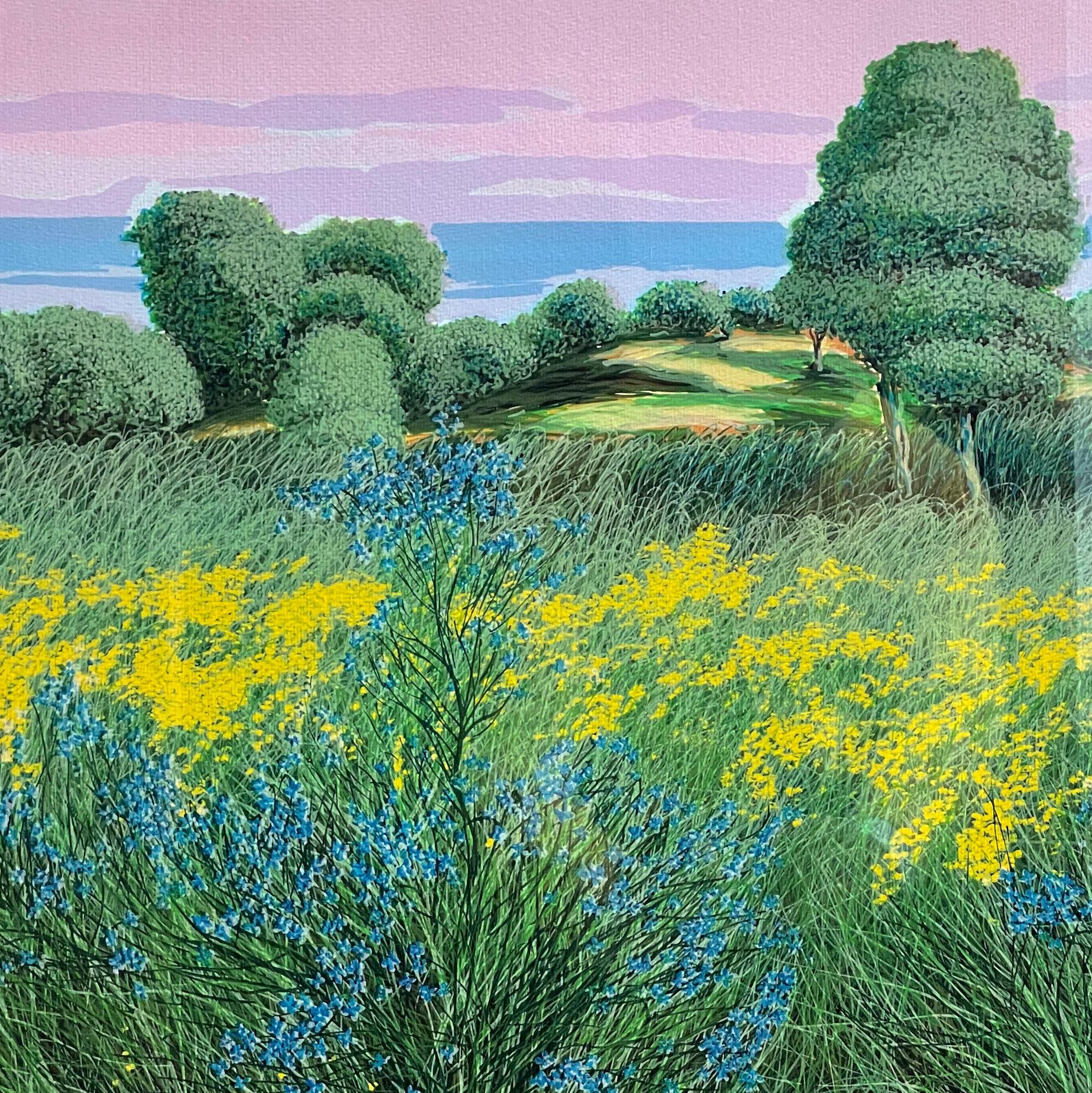 Immagine di Vecchi ulivi tra i campi
