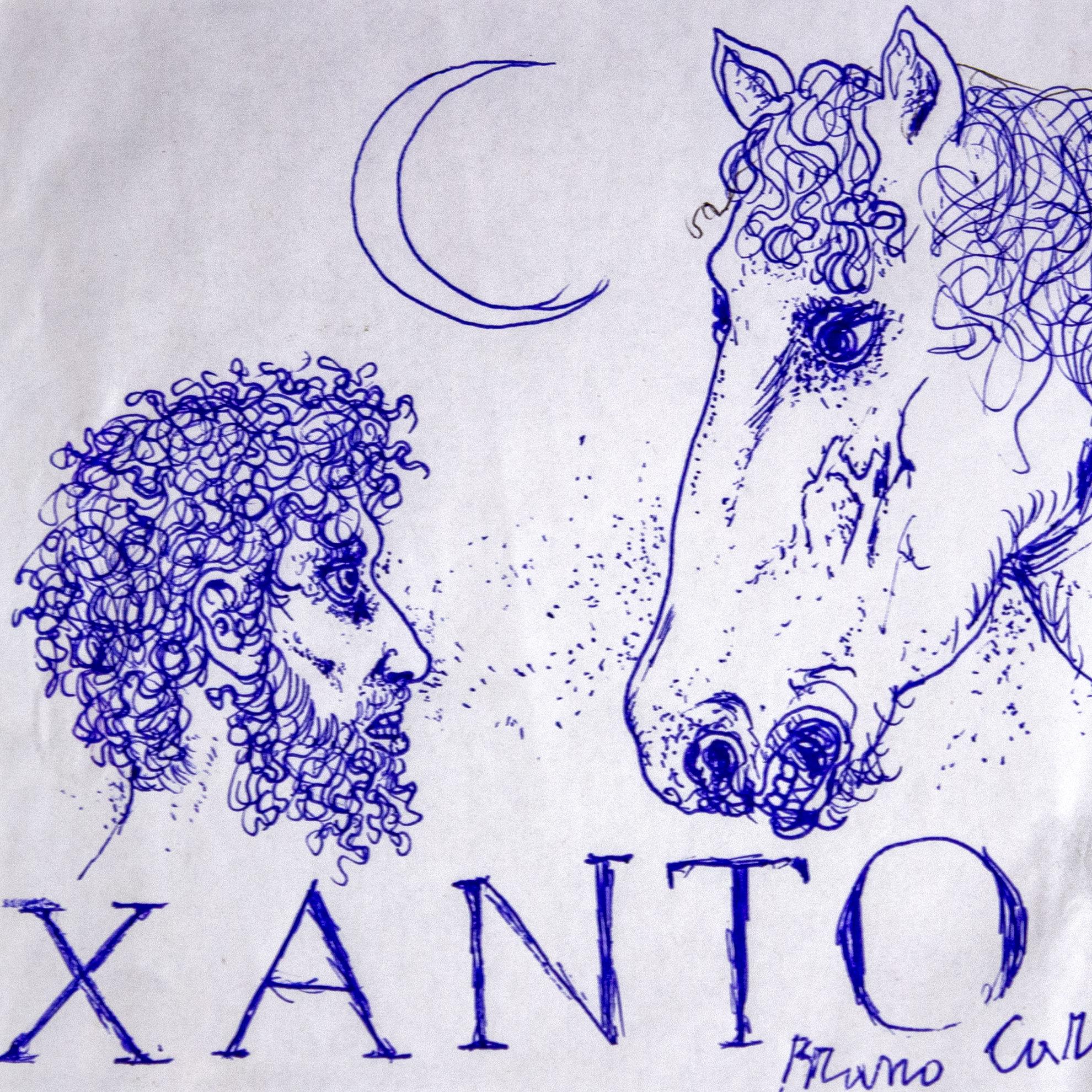 Immagine di Xanto