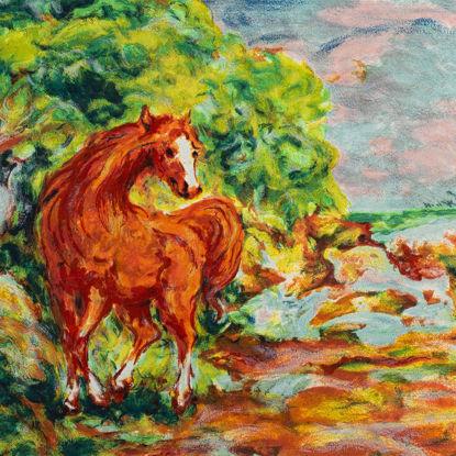 Immagine di Il cavallo rosso