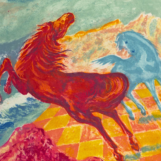 Immagine di Cavalli