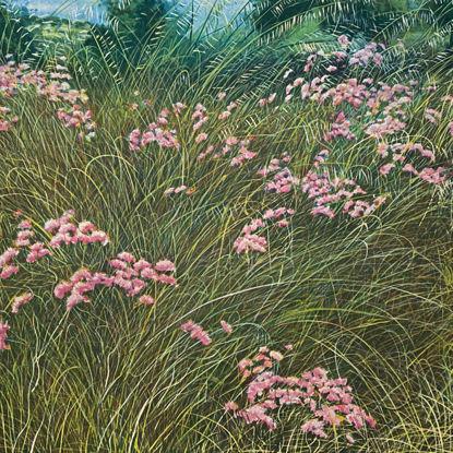 Immagine di Campo di fiori